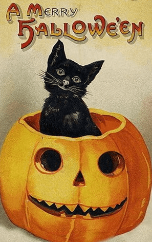 6e455e14 Halloween Sayings, Wishes, Quotes and Messages | Spooky Greetings