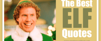 29 Funny Elf Quotes