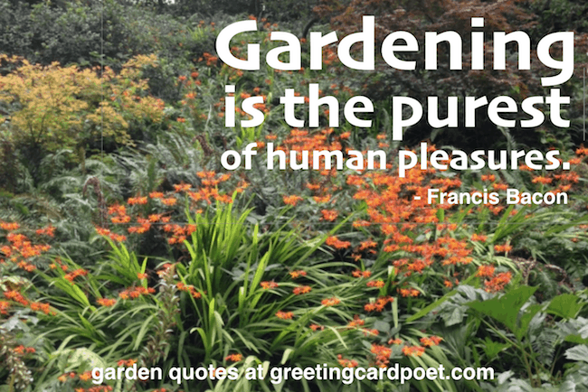 garden quotes and sayings image
