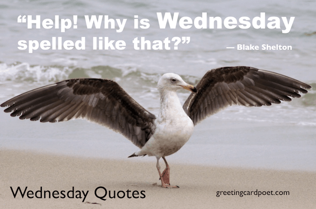 Wednesday quotes image