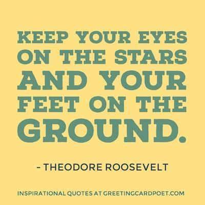 Theodore Roosevelt quote image