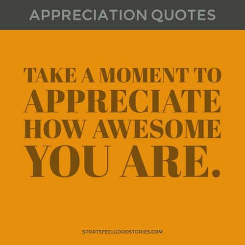 Appreciate your awesomeness quote image