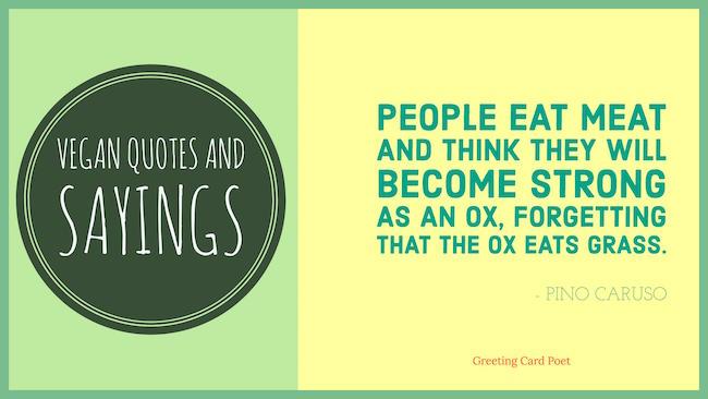 Vegan Quotes Amusing Vegan Quotes And Vegetarian Sayings  Greeting Card Poet