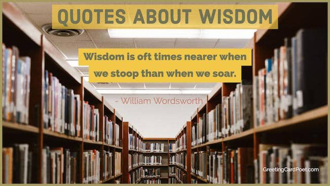 quotes about wisdom image