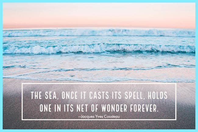 Cousteau Sea quote image
