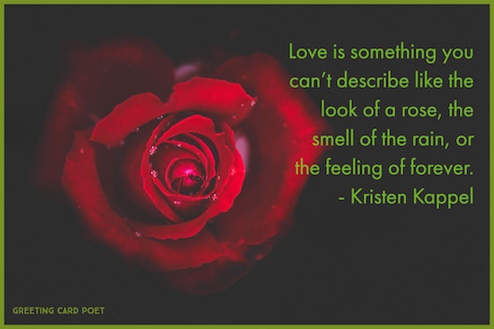 Love Is Like The Look Of A Rose Image
