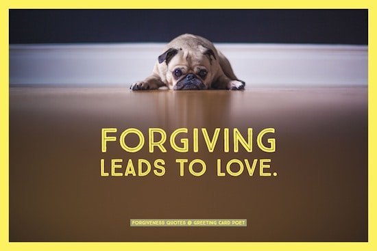 Thoughtful forgiveness quotes to move forward greeting card poet forgiving leads to love image m4hsunfo