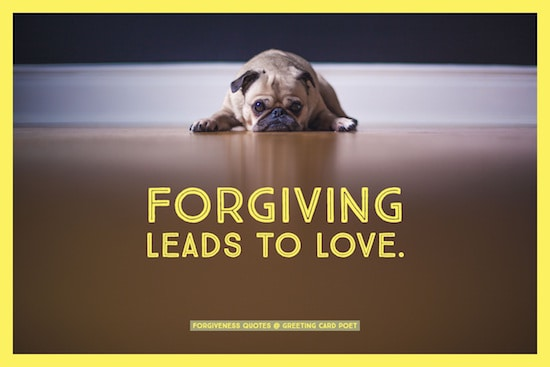forgiving leads to love image