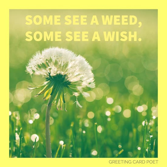 Some see a weed saying