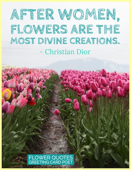 Christian Dior quote on flowers image