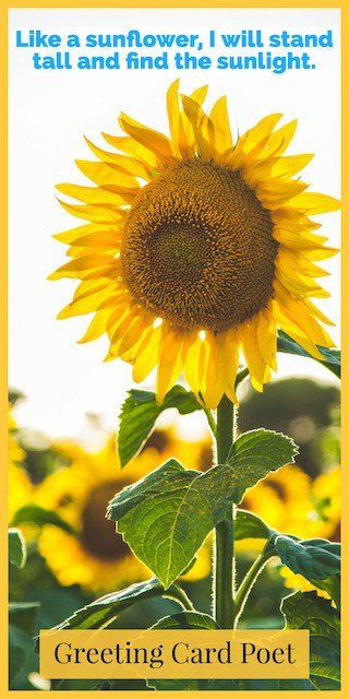 Sunflower saying image