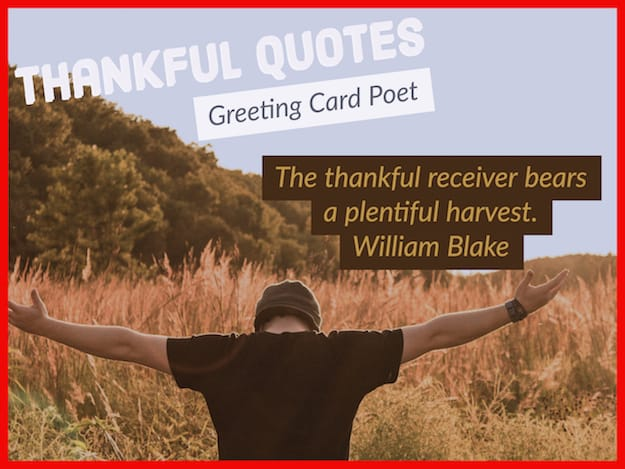 Thankful Quotes To Show Your Endless Appreciation Greeting Card Poet
