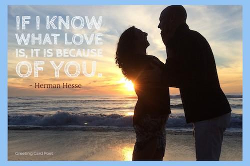 Herman Hesse quote meme