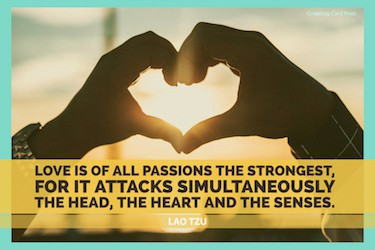 Love-is-of-all-passions-quote-image