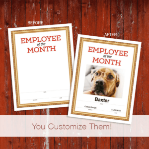 dog employee of the month image