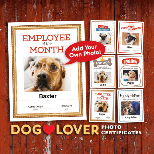 dog lover photo certificates image