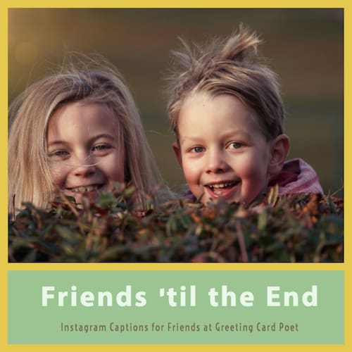 Friends 'til the end image