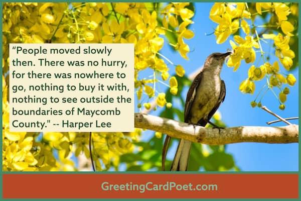 Harper Lee Hyperbole image