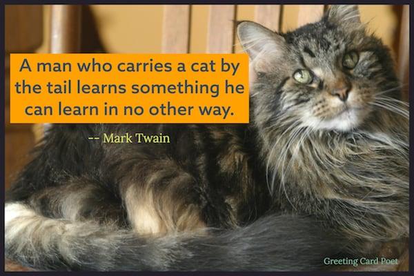 Mark Twain cat quote image