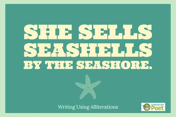 She sells sea shells image