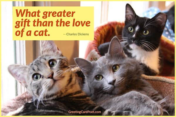 what greater gift than the love of a cat image