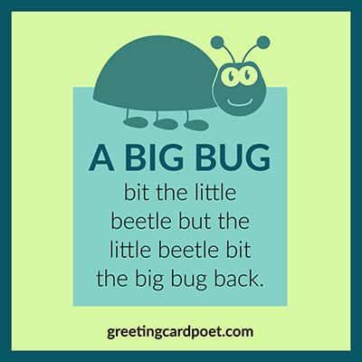a big bug image