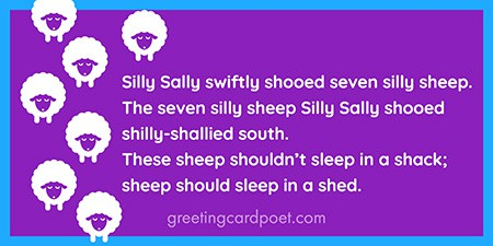 Silly Sally tongue twister image