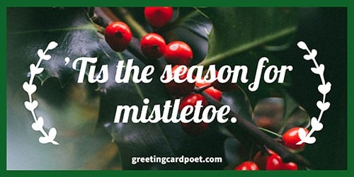 It is the season for mistletoe meme