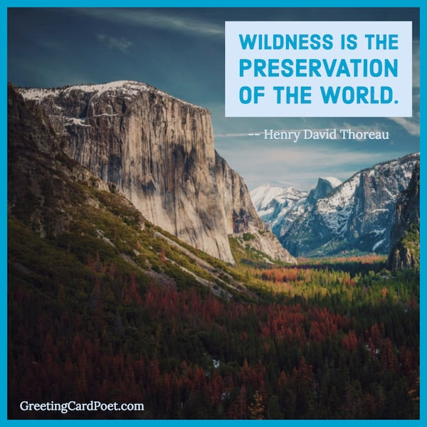 Henry David Thoreau quotes image