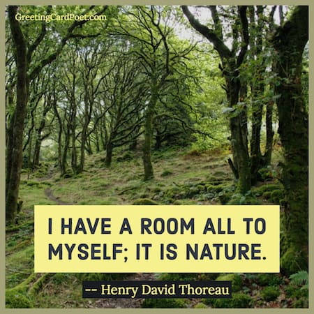 Thoreau saying meme