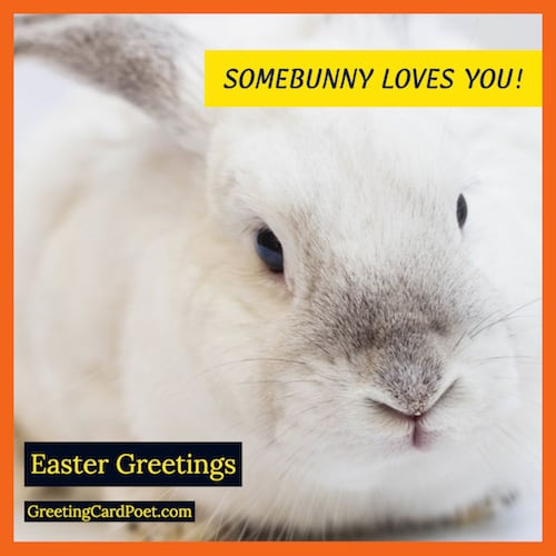 Some bunny loves you wish image