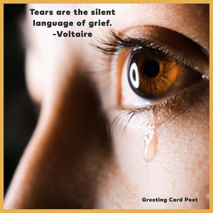 The silent language of grief quotation image