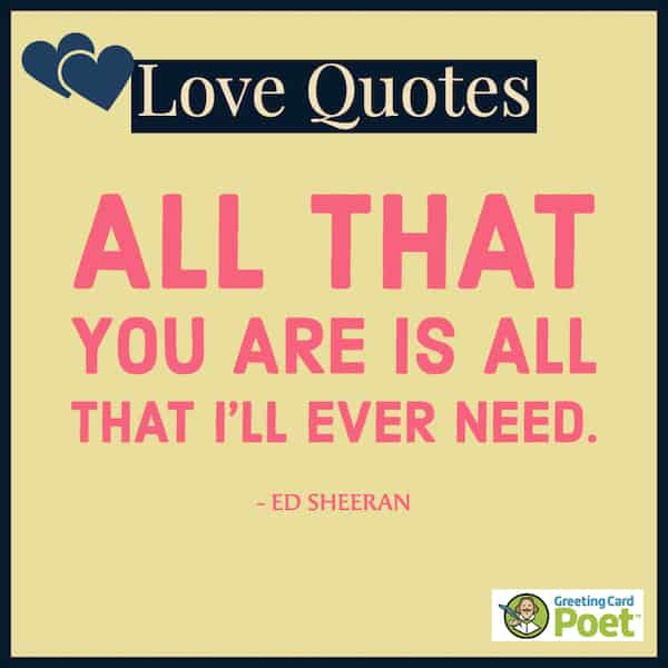 All that you are is all that I'll need quote image