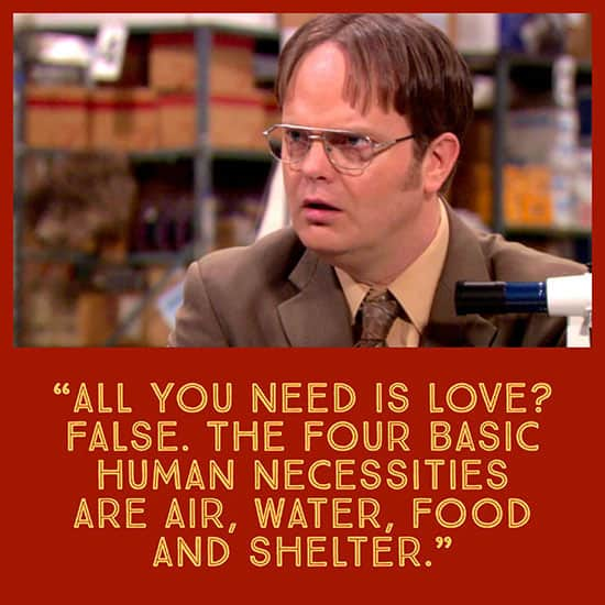 Best Dwight Schrute Quotes - all you need is love