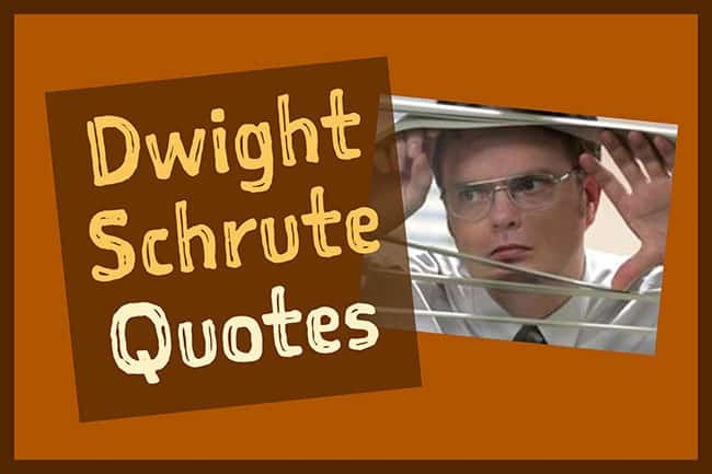 Best Dwight Schrute Quotes of All Time