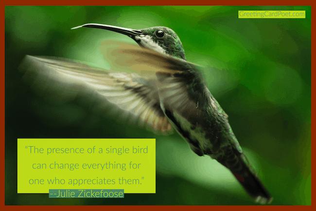 Good bird quotes