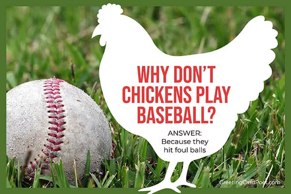 chicken play baseball - funny riddles