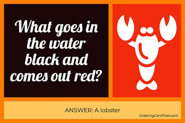 Lobster riddle meme