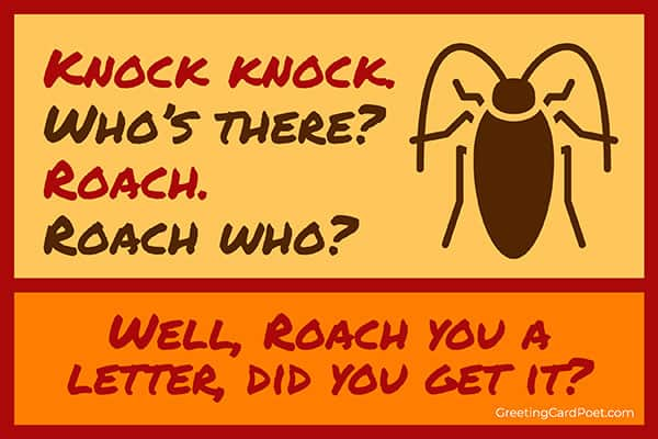 Knock knock joke about a Roach