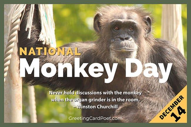 National Monkey Day December 14
