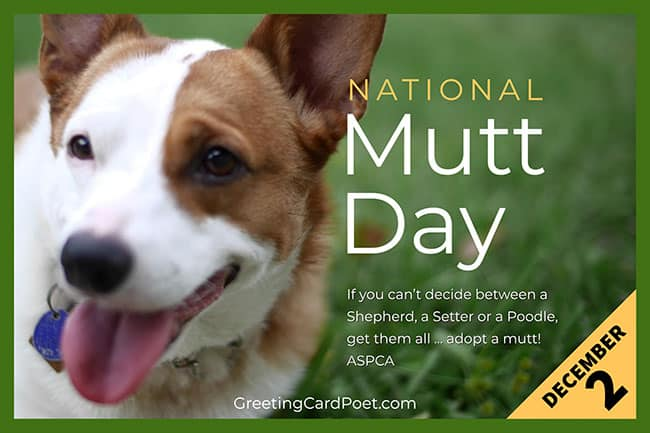 national-mutt-day