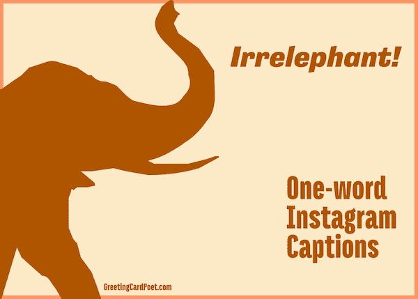 Irrelephant - One-word captions