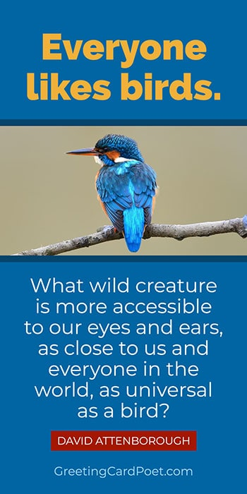 David Attenborough quote on birds