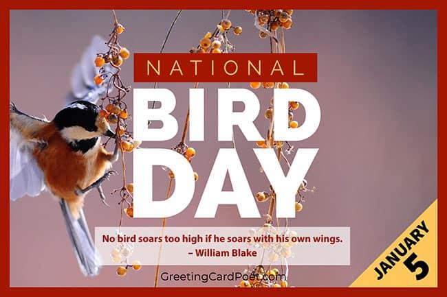National Bird Day - January 5