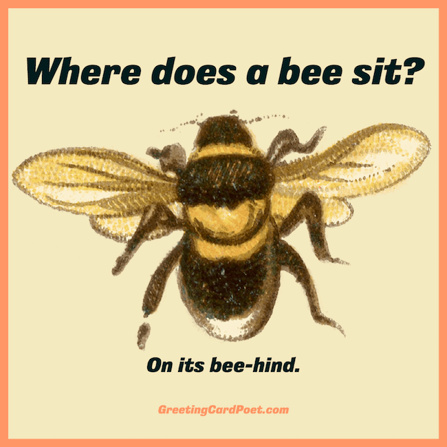 Where does a bee sit joke