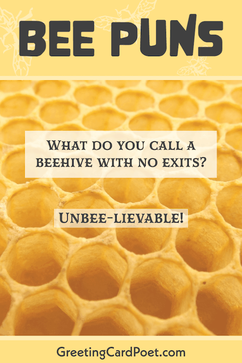 Fun Bee Riddles