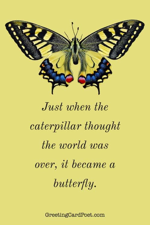It became a butterfly quotations