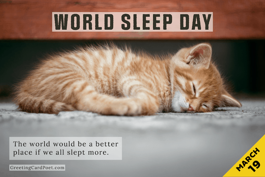 World Sleep Day meme