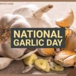 National Garlic Day