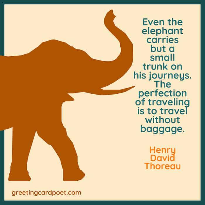 Elephant Sayings
